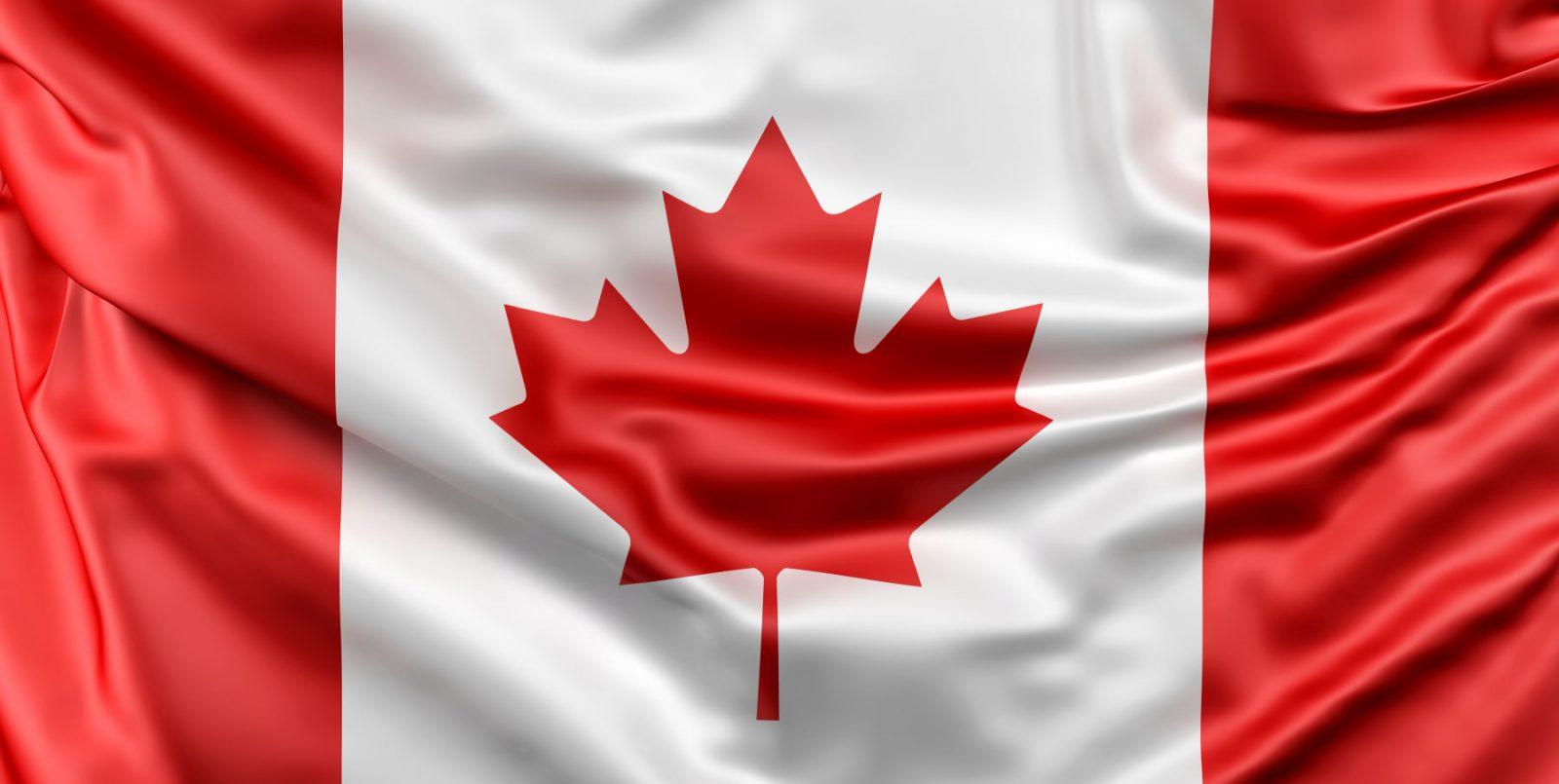 Trovare importatori di vini in Canada: ecco come fare